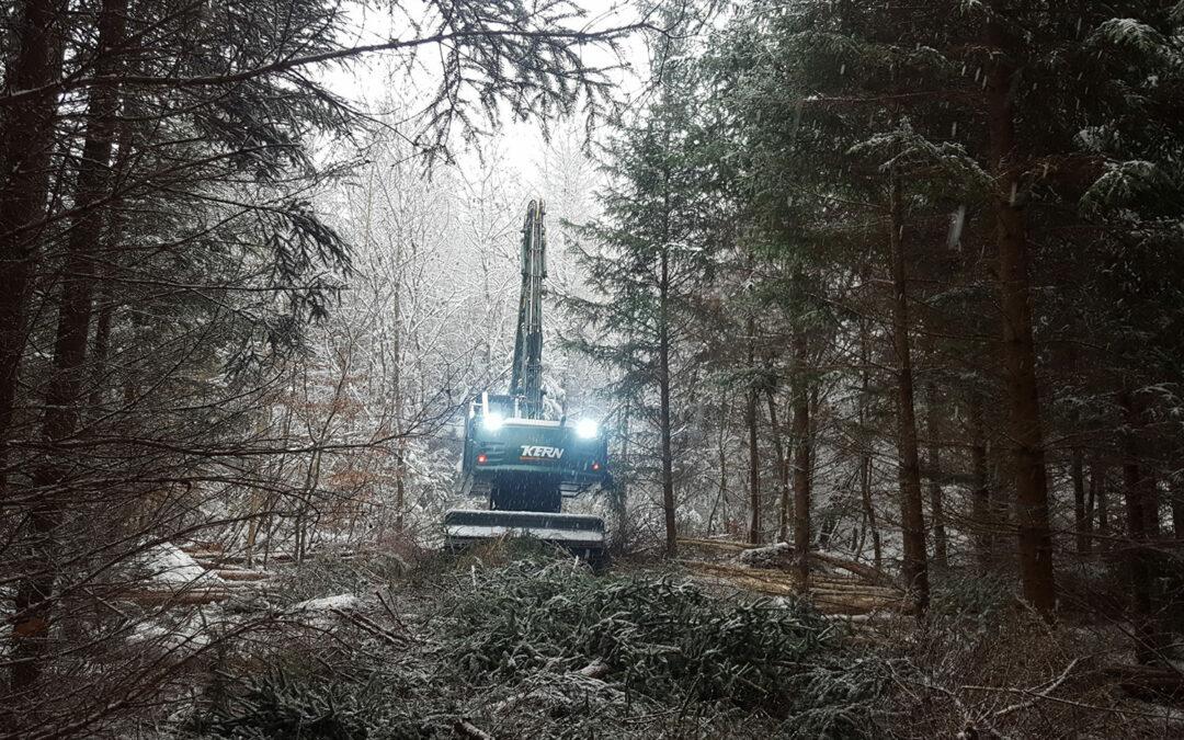 Bachelor-Arbeit Digitale Rückegassen in der Forstwirtschaft